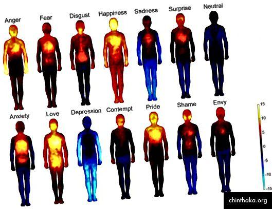 """""""Телесни карти на емоциите"""", Трудове на Националната академия на науките (2013 г.)"""