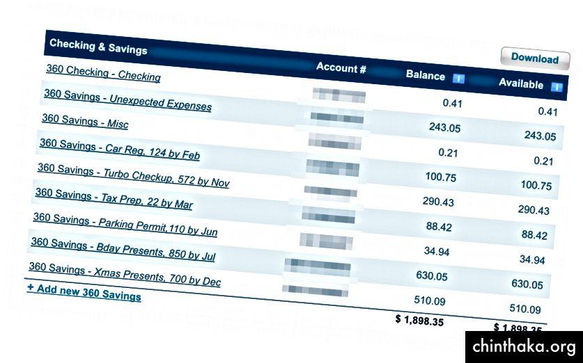 Meine Subspareinlagen berücksichtigen die jährlichen Ausgaben. Turbo ist der Name meines Haustierkaninchens.