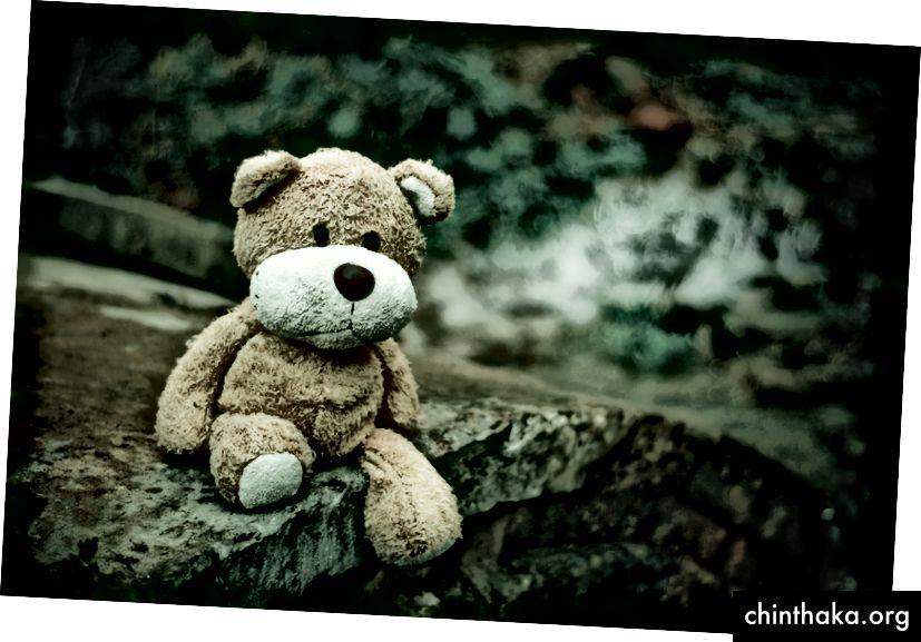 Ich hasse Bären. Alle Bären. Sogar diesen.
