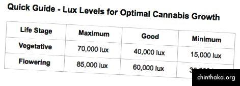 Lux Level Guide von growweedeasy.com ausgeliehen