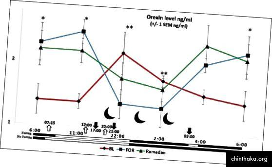 ラマダンの昼間の断食の前と最中の8人の健康な男性ボランティアにおける血漿オレキシンA濃度の概日パターン。