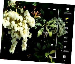 Enfoque manual utilizando el modo Pro del S7.