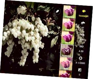 Los efectos de filtro están disponibles en los modos Auto y Pro.