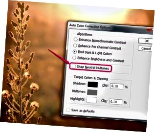 Dialogrutan Auto Color Correction Alternativ i Photoshop.