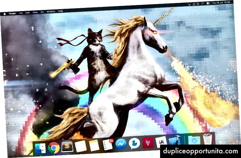 La schermata iniziale del laptop Sindre