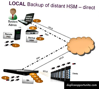 Diagramma del processo di backup per un dispositivo SafeNet Luna HSM