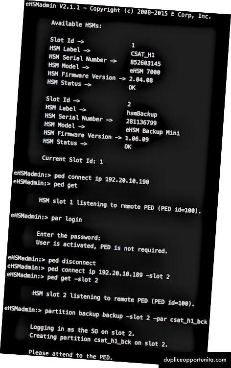 Prima serie di script e comandi e output dal lavoro di clonazione HSM