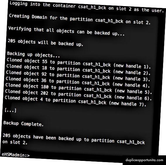 Mock-up delle fasi finali del lavoro di clonazione HSM. Come filmato, molte altre file di