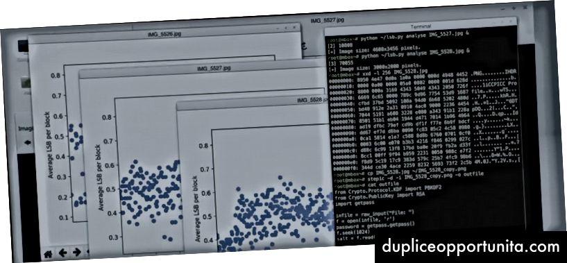 画像ファイルの1つから隠されたデータを分析および抽出する