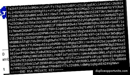 隠されたスクリプトはRSA秘密鍵を再生成します