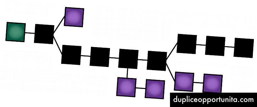 CC-BY-3 Theymos dalla vettorializzazione della wiki di Bitcoin: la catena principale (nera) è costituita dalla serie più lunga di blocchi dal primo blocco (genesi) (verde) al blocco corrente. I blocchi orfani (viola) esistono al di fuori della catena principale.