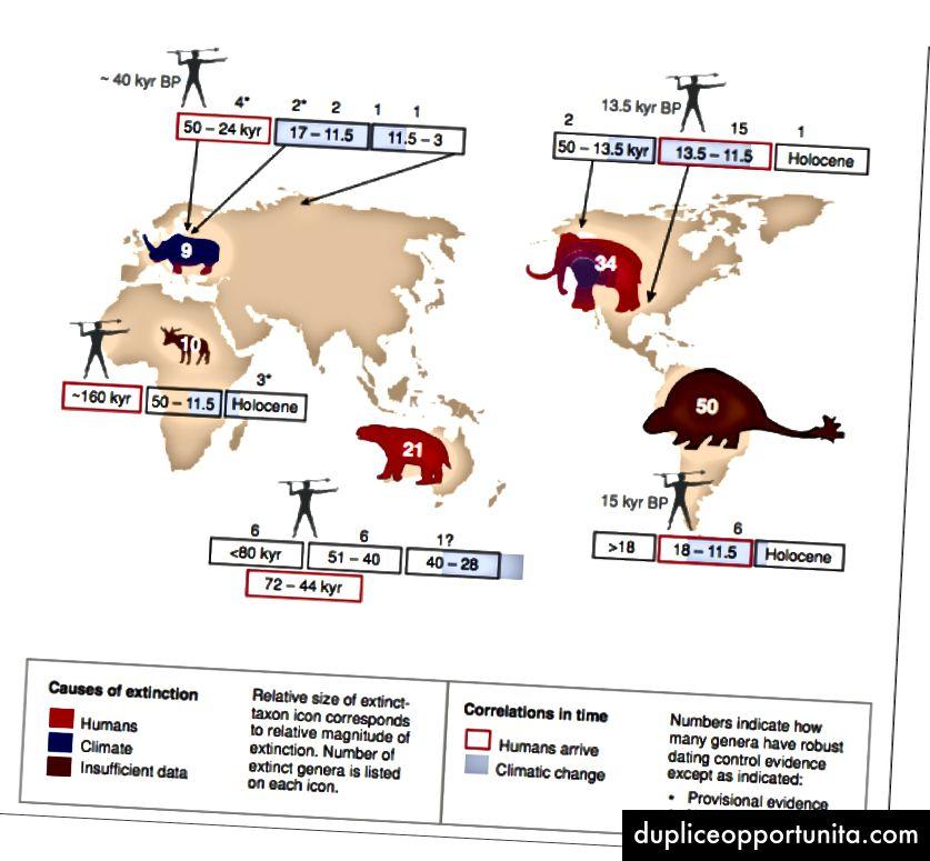Cronologia dell'estinzione di megafauna. Koch & Barnosky (2006)