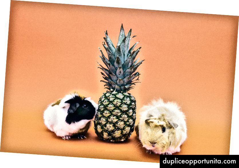 Minesuotas ananasas, maloniai sutikus Pexels.