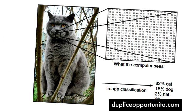 Kuinka tietokone näkee kuvan. - lähde: http://cs231n.github.io/classification/