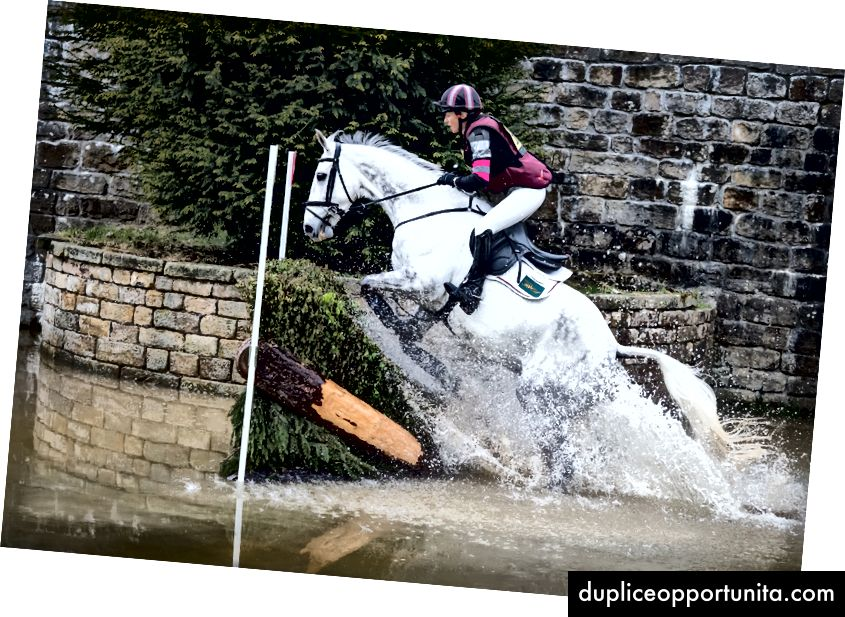 UnsplashのPhil Hodkinsonによる写真