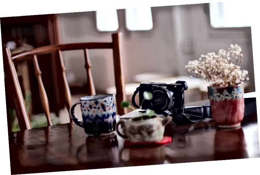 Veľkosť - malý ako šálka čaju. Foto: Prasanna Kumar, Unsplash