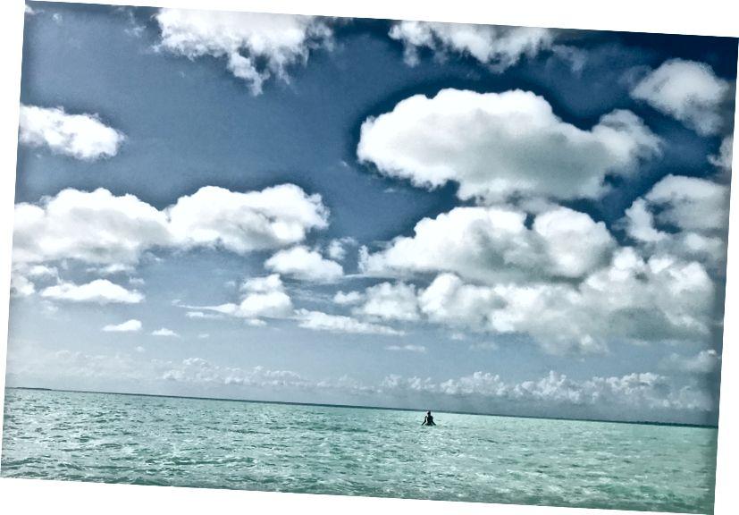 Fotoğraf: Genevieve, Ambergris Caye, Belize