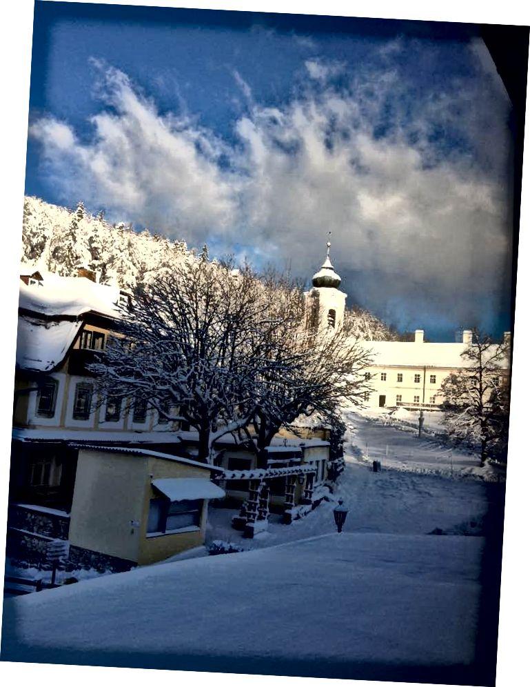 მთის მწვერვალი ავსტრიაში, ქარიშხლის შემდეგ. 2017 წლის იანვარი.