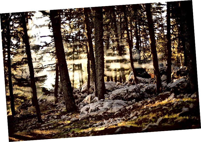 Trại của chúng tôi vào buổi sáng.