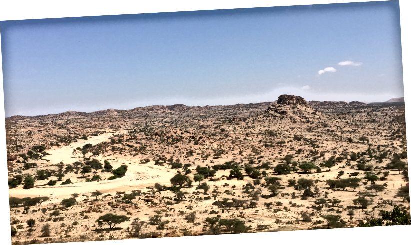 Puščava okoli Laas Geela