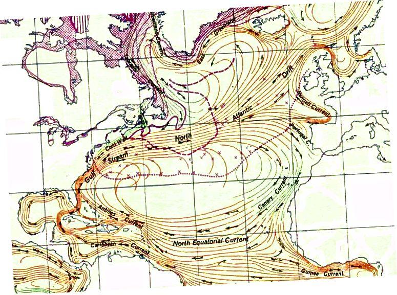 Північноатлантичний Гир, вихревий за годинниковою стрілкою вихор океанічних течій у Північному Атлантичному океані.