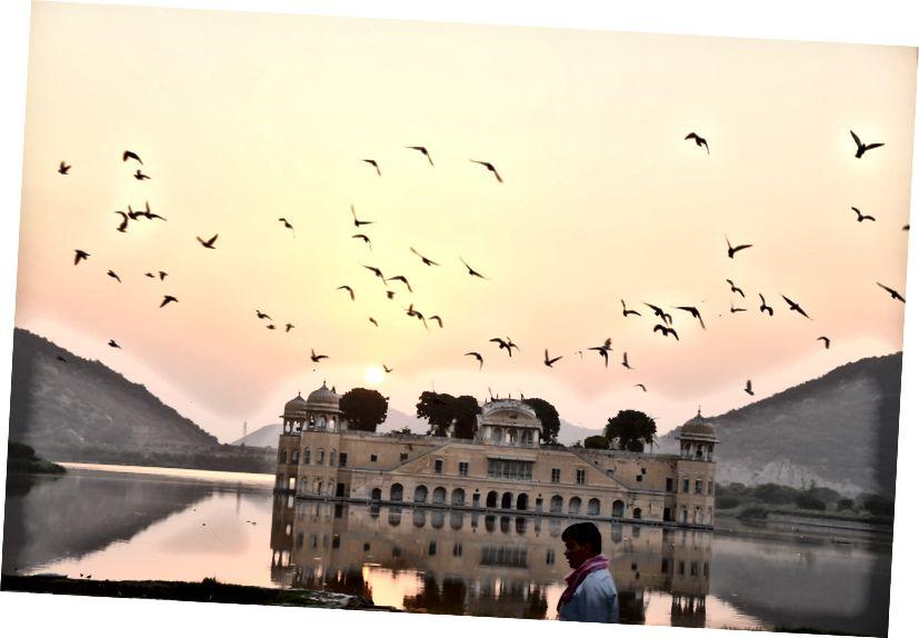 Resim Kredisi: Dharmendra Chahar