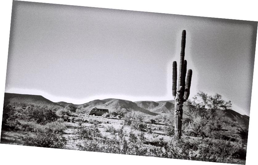 Арізона була приємна