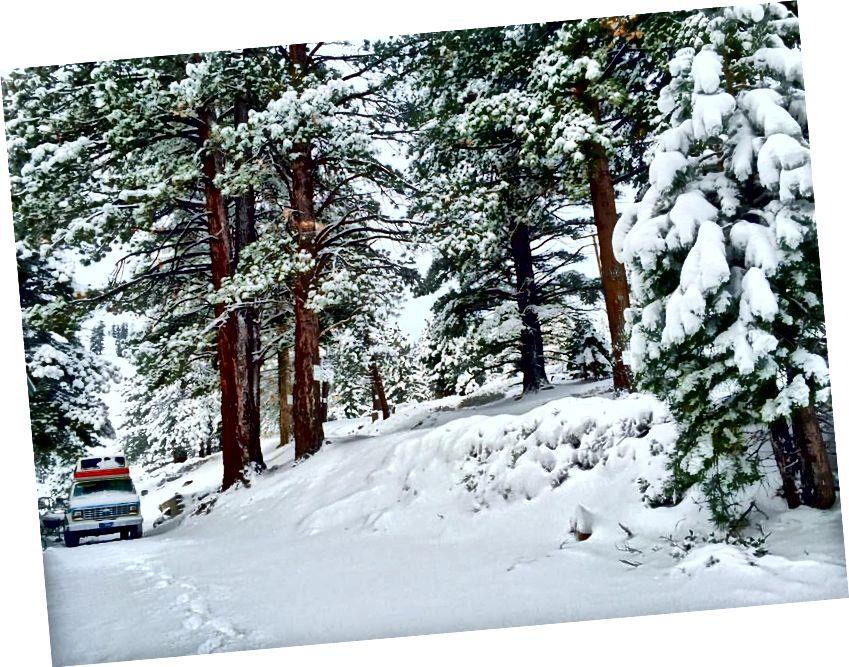 Перша снігова буря в сезоні.