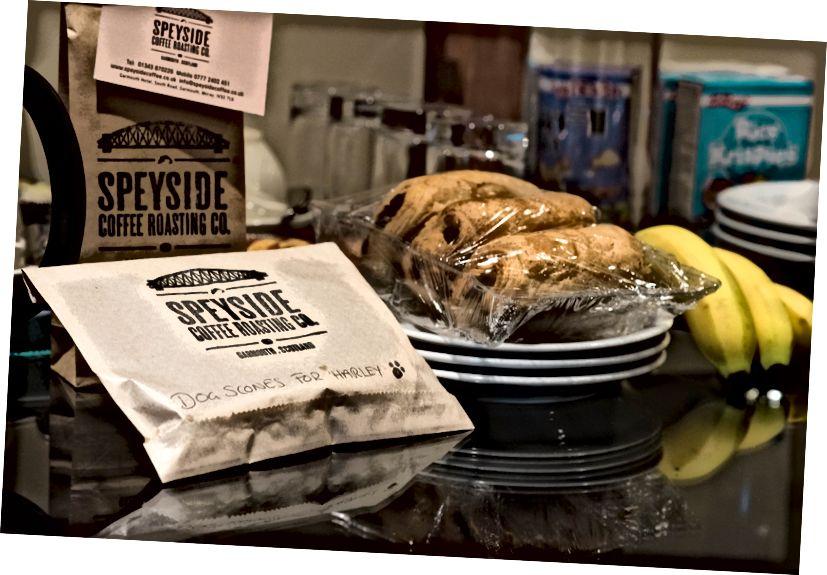 Harley için ev pişmiş köpek çörekler! Ve Speyside öğütülmüş kahve bizim için - çok asidik olmayan, bu bizim istediğimiz gibi!