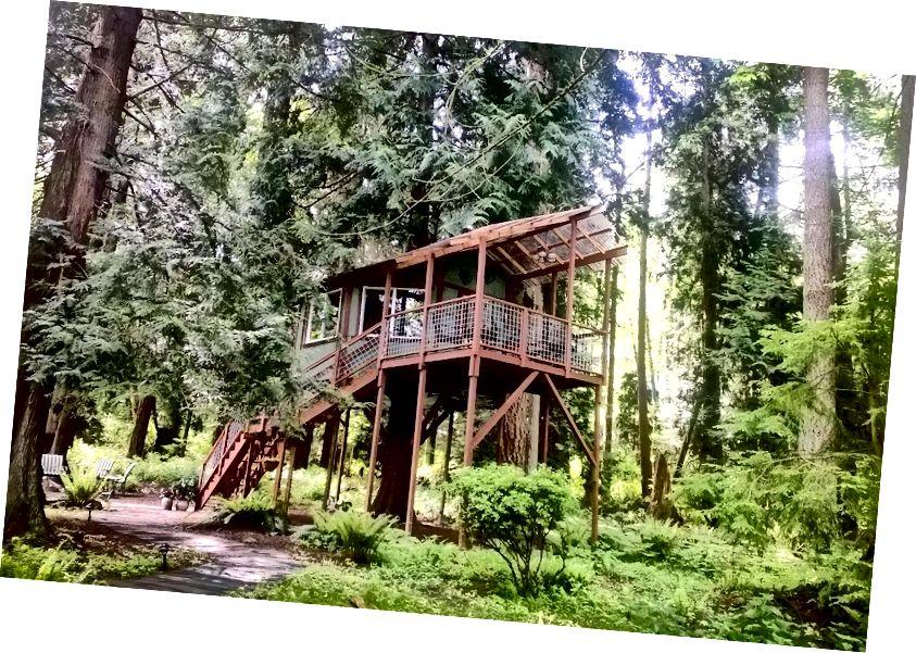 Kaynak: Washington'daki popüler Treehouse Airbnb