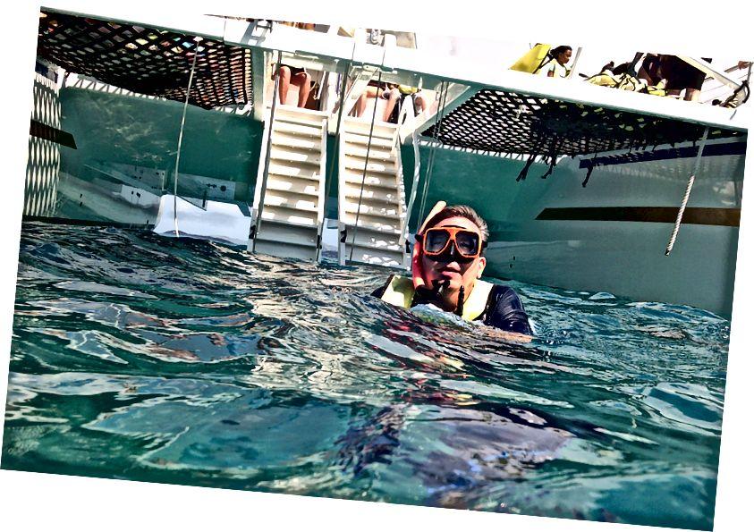 Thomas yakınındaki Buck Island deniz kaplumbağası sığınağında tüm Jacques Cousteau alıyorum.