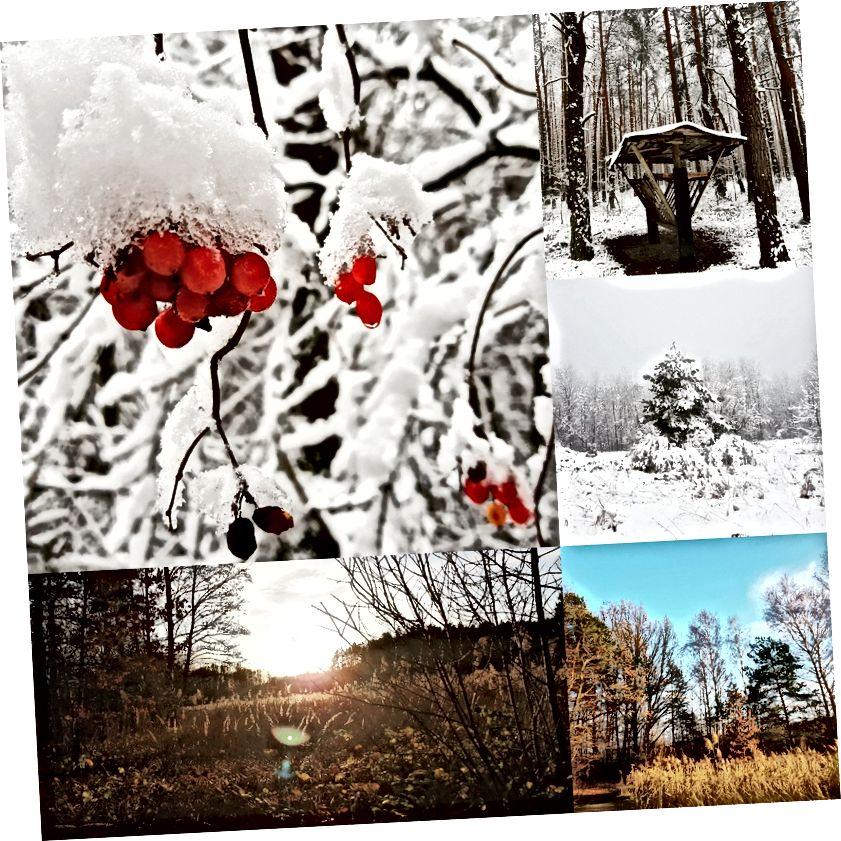 Karolina Kulach tarafından paylaşılan bloglar