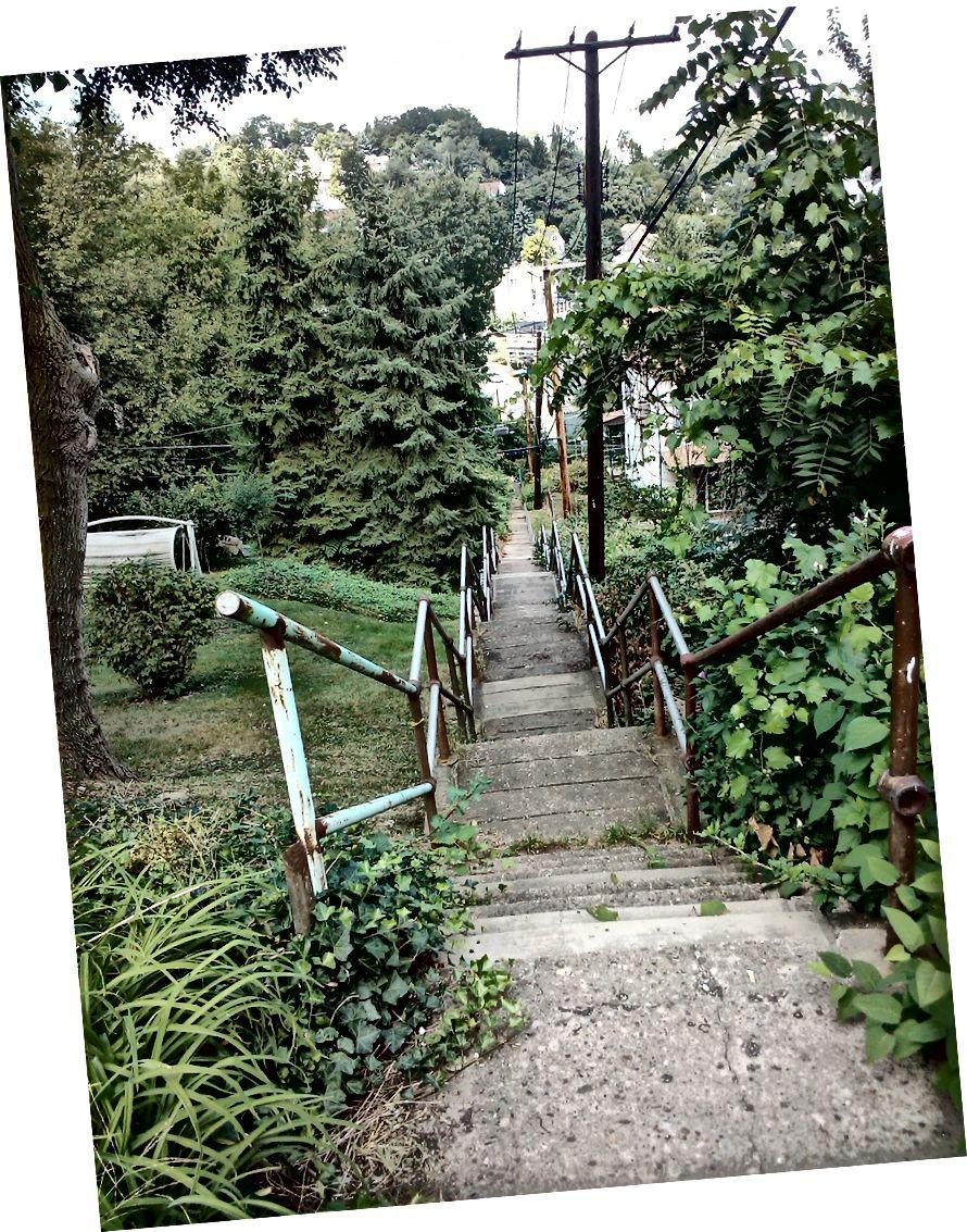 Một số bước gần khu phố cũ của tôi ở khu South Hills của Pittsburgh - HPEB, 2016