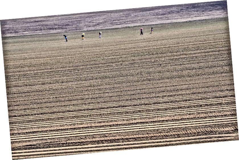 Tarım arazileri, ormanlık, uçak ve Hokkaido Dağları