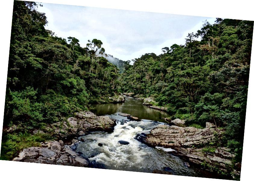 Ranomafana Ulusal Parkı | © Vaughn Lewis / Kültür Gezisi