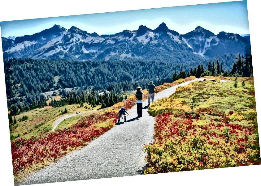 Thiên đường ở Mt. Công viên quốc gia Rainier, Washington