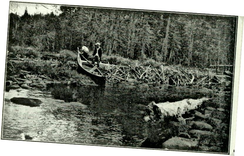 Rod & Gun Dergisi 1898, Flickr