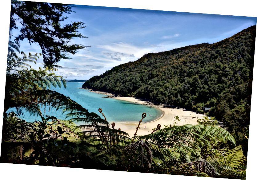 Abel Tasman National Park Yeni Zelanda