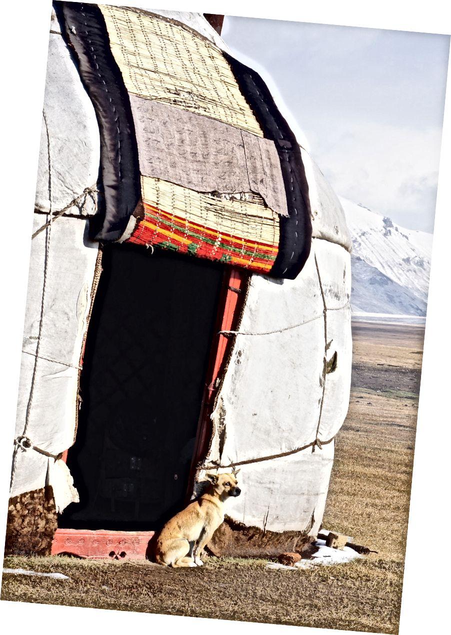 Geleneksel Kırgız 'bozoy' giriş kapısı.
