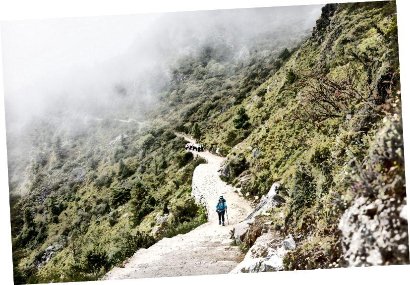 Wifey trekking mặc dù cơn ngộ độc thực phẩm. Phụ nữ thực sự mạnh hơn đàn ông chúng ta nhiều lần.