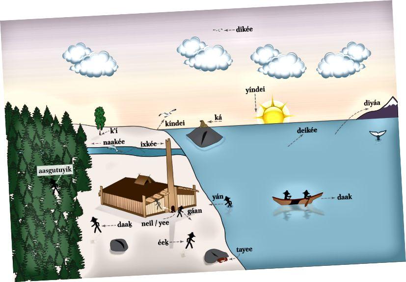 daaḵ ve éeḵ dahil olmak üzere X̱'unéi (Profesör Lance Twitchell) tarafından oluşturulan Tlingit edatlarının diyagramı