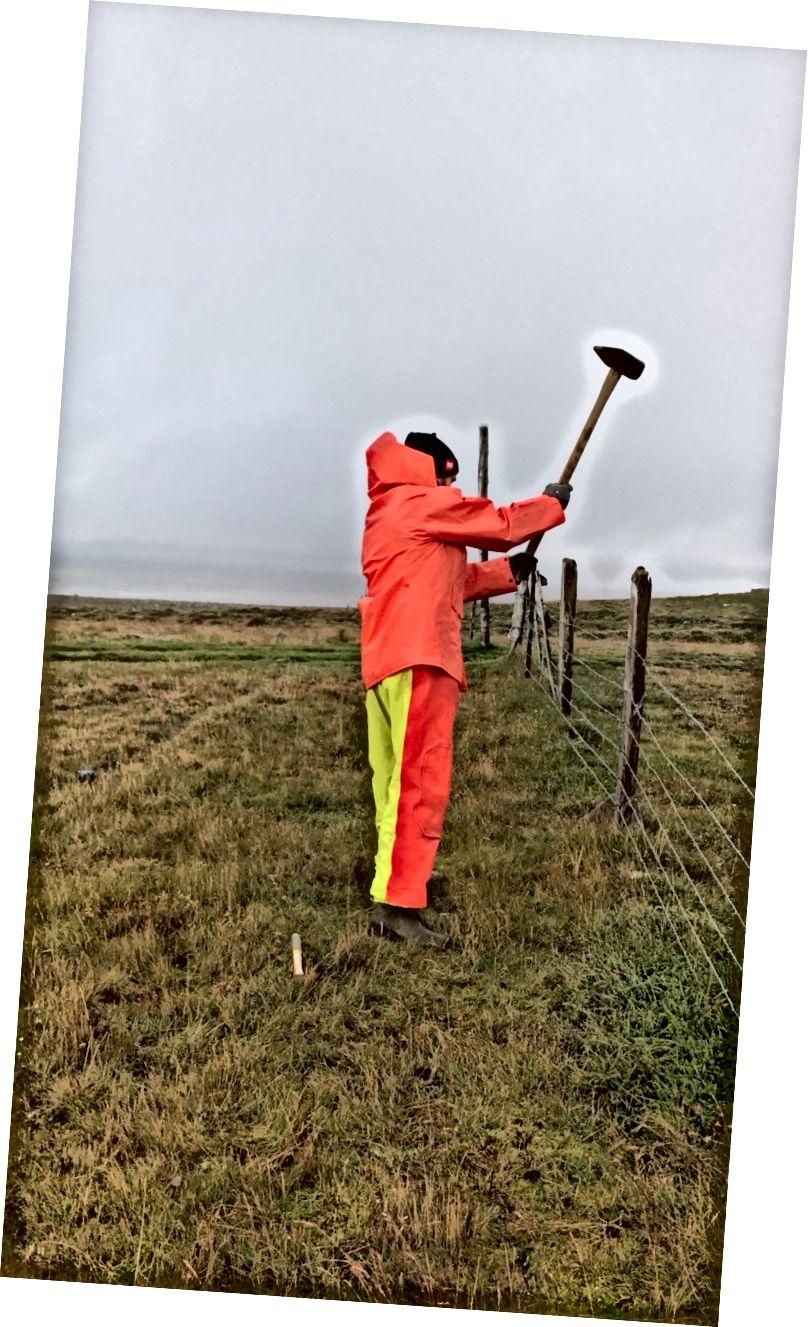 Tvoros taisymas lietaus metu - 2017 m. Rugpjūtis - Ali nuotr