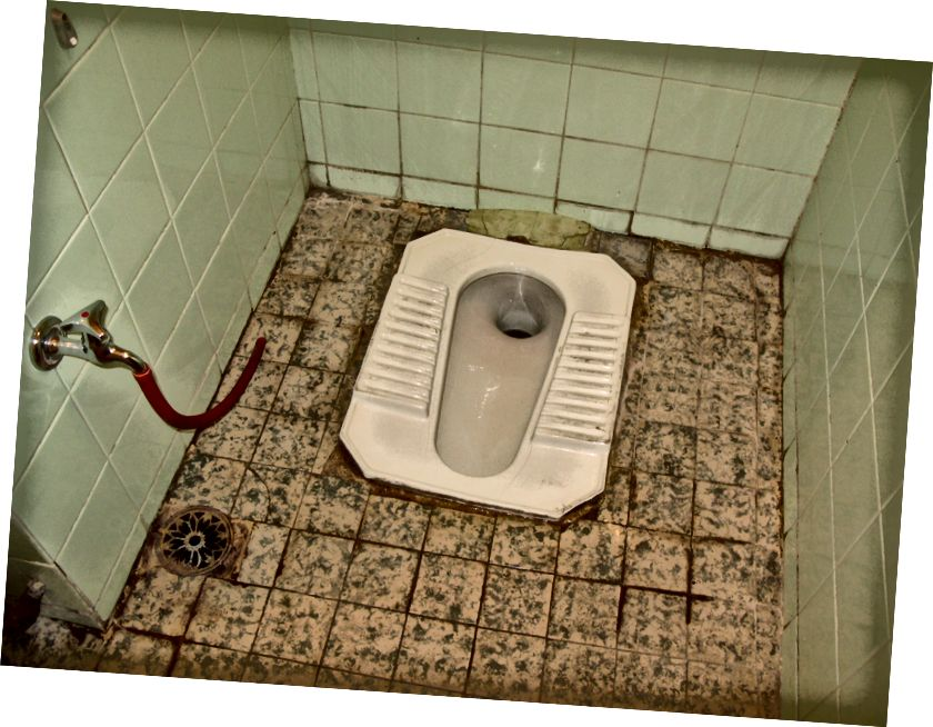У мене не було камери для мене для ванної кімнати, на щастя, у мене є Інтернет… (Courtesy SuSanA Secretariat…)