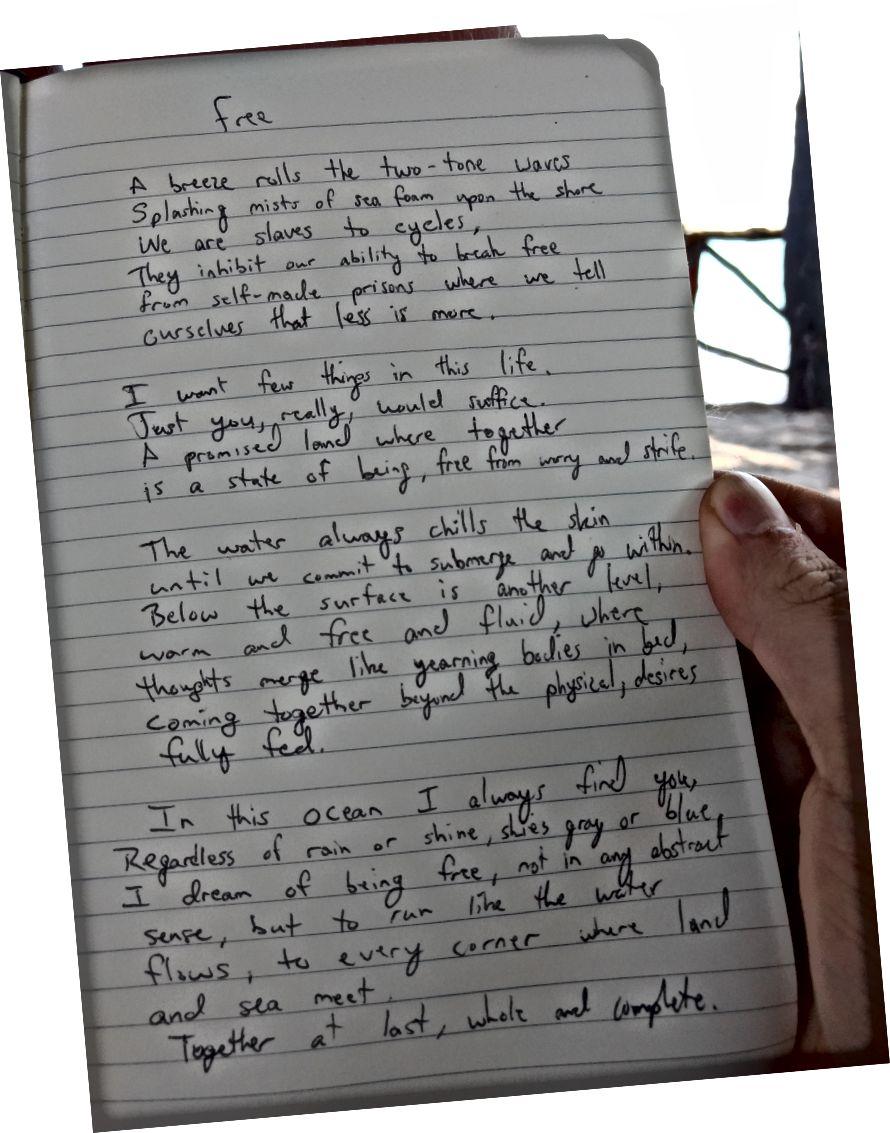 Tôi đã viết bài thơ này để thay thế. Nó có thể trông quen thuộc với một số bạn