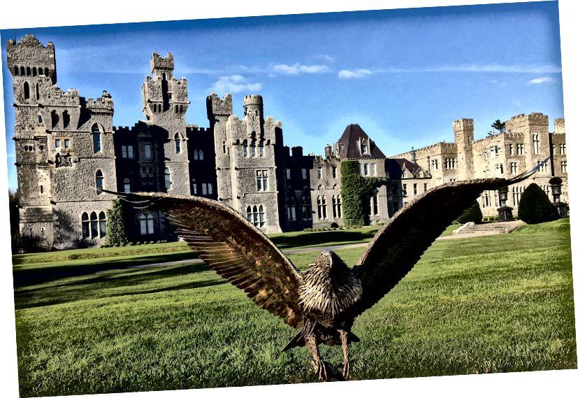 Cork'ta görebileceğimiz bir kale