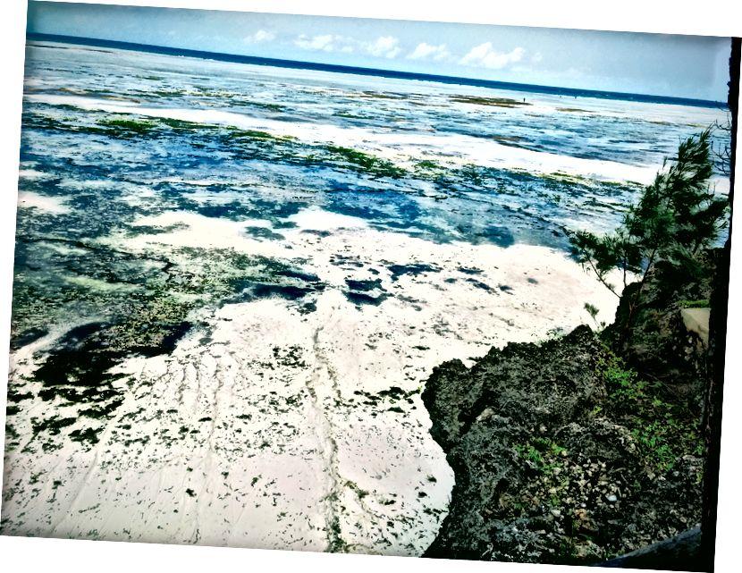 Cá nhân, tôi thấy thủy triều thấp là ngoạn mục. Nó trông hơi khác nhau mỗi ngày.