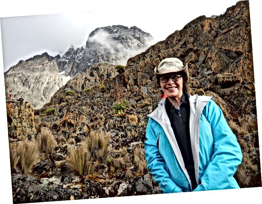 Mt. Kenya içinde belgili tanımlık geçmiş.