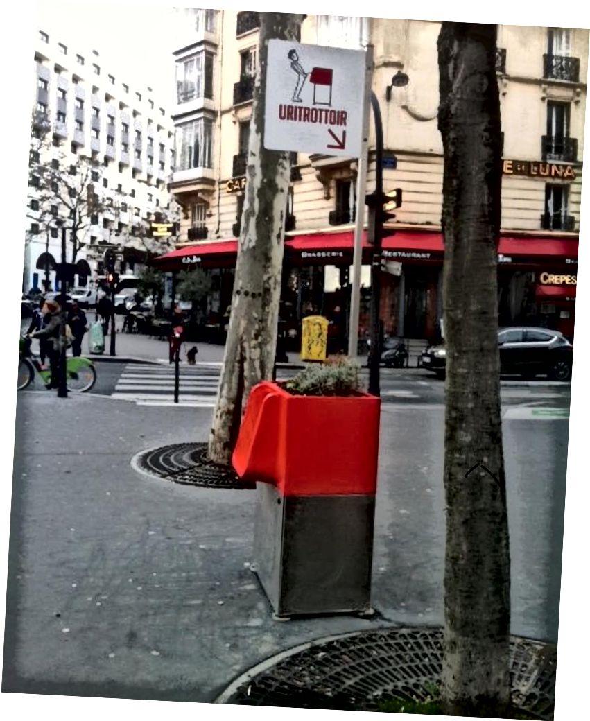 Знак над паризьким туалетом чудовий, хлопець схожий на те, що він чудово проводить мовчання на публіці!