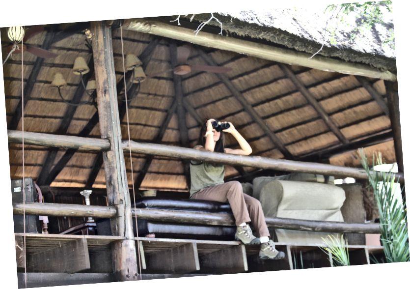 ôm lấy Vườn quốc gia Kruger ngay sau Núi Bàn