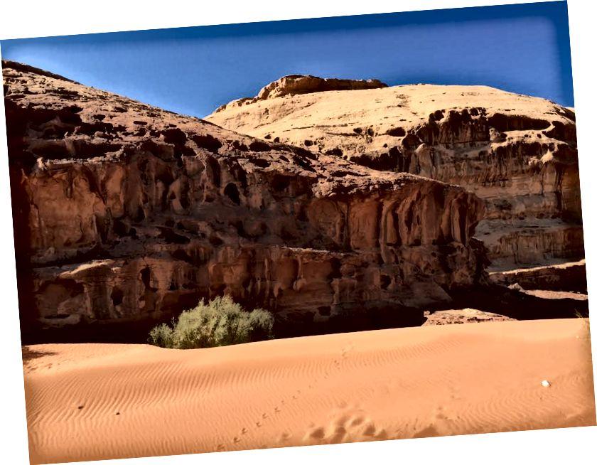 Petra ve Wadi Rum'un fotoğrafları